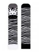Lady Zebra
